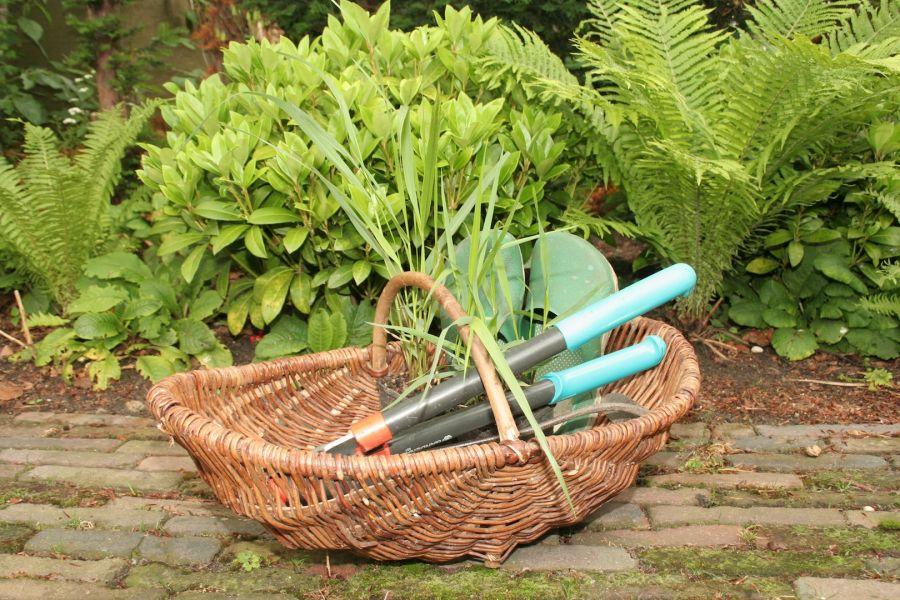 Wie wil onze tuinploeg komen versterken?